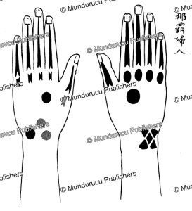 hand tattoo pattern for women from shuri, ryukyu islands, edmund m.h. simon, 1913