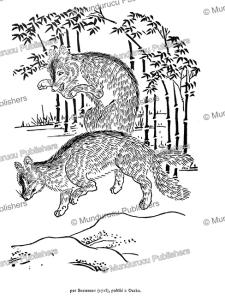 Playing foxes, Japan, Shumboku, 1715 | Photos and Images | Travel