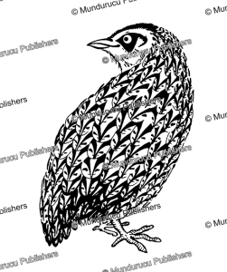 Japanese quail design | Photos and Images | Travel