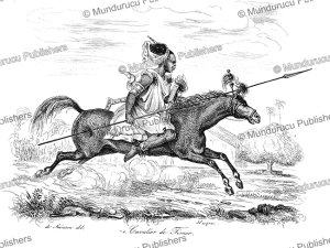 horse man of timor, louis auguste de sainson, 1839