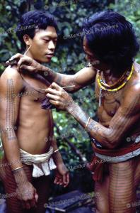 outlining a tattoo design, mentawai, reimar schefold, 1982