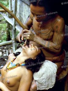 mantawai tooth filing, reimar schefold, 1982