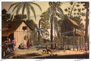 house on sumatra, castelllini, 1827