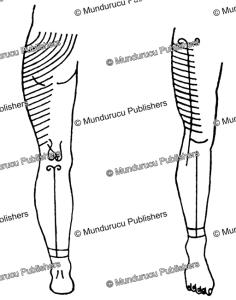 Tattoo leg patterns for Mentawai men, J.A. van Beukering, 1940 | Photos and Images | Travel