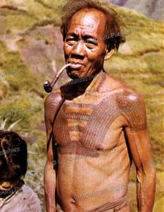 tattooed kalinga man, c. von fu¨rer-haimendorf, 1967