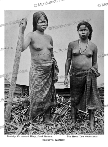 negrito women of the philippine islands, leonard wray, 1900