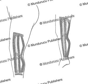 pohnpei female leg tattoo pattern, otto finsch, 1880