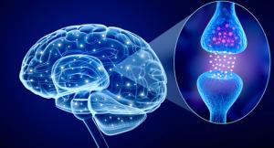 parkinson's disease - treatment -