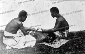 tattooing in samoa, w.d. handy, 1924