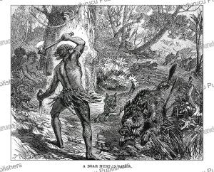 Boar hunt in Samoa, Johann Baptist Zwecker, 1870 | Photos and Images | Travel