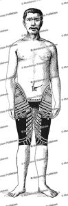 Samoan trouser tattoo for men, front view, Fresenius, 1896 | Photos and Images | Travel