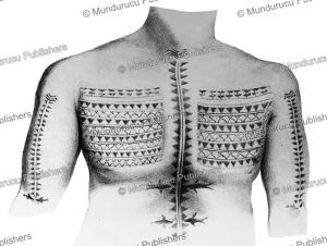 Tikopian chest tattoo, Louis Auguste de Sainson, 1835 | Photos and Images | Travel