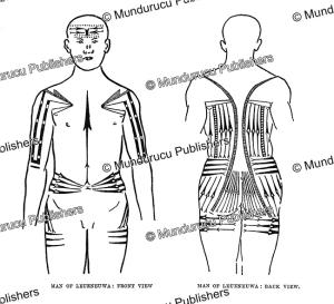 tattoo pattern for men on leueneuwa island, solomon islands, c.m. woodford, 1906