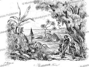 a view on tanna, vanuatu, jules boilly, 1839