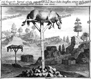 The manner the Tungus bury their horses, Nicolaas Witsen, 1705 | Photos and Images | Travel