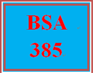 BSA 385 Week 2 Individual: Requirements Document | eBooks | Education