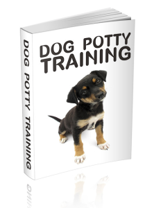 dog potty training - teaching your pup the right way