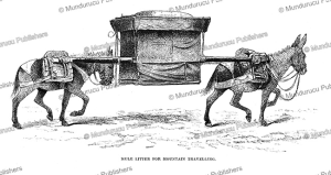 pack-mules for travelling, mongolia, josiah wood whymper, 1883