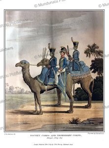 Dromedary Corps of the Bengal army, India, G. Fitz Clarence, 1819 | Photos and Images | Travel