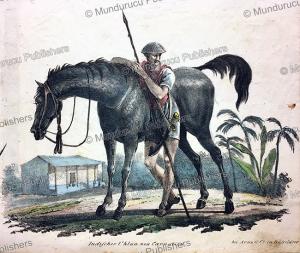 indian uhlan (light cavalry), 19th century