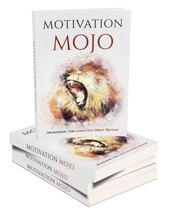 First Additional product image for - Motivation Mojo