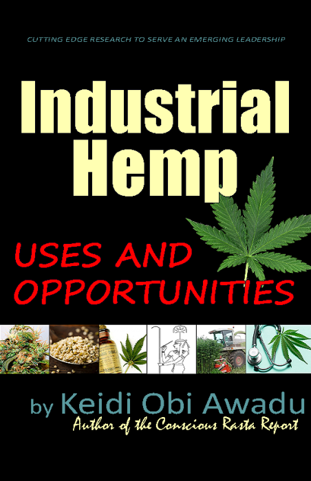 First Additional product image for - Industrial Hemp: Uses and Opportunities eBook