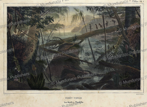 The Amazon, Jean Baptiste Debret, 1834 | Photos and Images | Travel