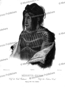 mahsette-kuiuab or le sonnant, chief of the cree indian, fort union, great plains, karl bodmer, 1839