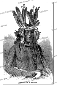 Sioux chief Standing Buffalo, Isaac v.d. Heard, 1863 | Photos and Images | Travel