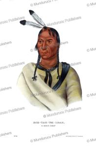 Eshtahumleah (Sleepy eyes), a Sioux chief, Great Plains, Thomas McKenney, 1872 | Photos and Images | Travel