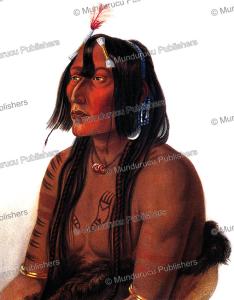 Psichdja-Sahpa, a Yanktonai or Western Dakota Indian, Karl Bodmer, 1840 | Photos and Images | Travel