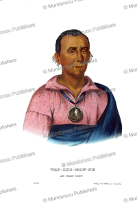 Watchemonne (the Orator), an Ioway chief, Thomas McKenney, 1872 | Photos and Images | Travel
