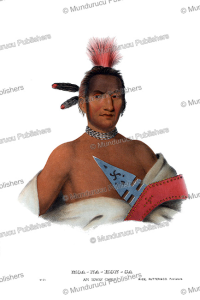 Moanahonga (Great Walker), an Ioway chief, Thomas McKenney, 1872 | Photos and Images | Travel