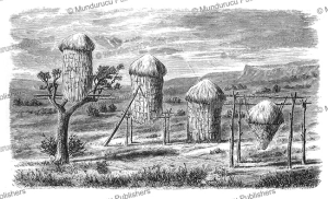 Corn-granaries by the Miwok Indians, J.W. Powell, 1877 | Photos and Images | Travel