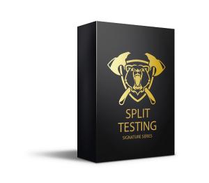 vss split testing