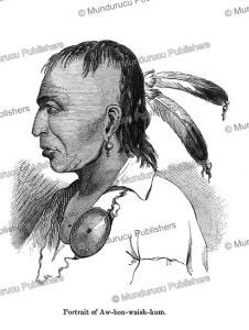 Awbonwaishkum, an Ojibwa or Ottawa Indian, Canada, Paul Kane, 1859 | Photos and Images | Travel