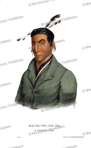 Katawabeda, a Chippewa chief, Thomas McKenney, 1872 | Photos and Images | Travel