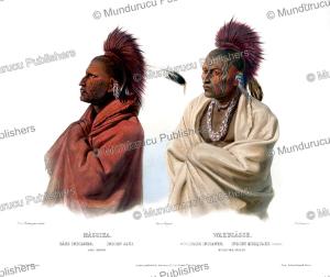 Sauk and Musquakee (Meskwaki), Karl Bodmer, 1840 | Photos and Images | Travel