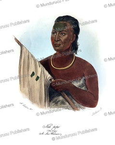 Nah-pope, a Sac warrior of the Eastern Woodlands, George Catlin, 1840 | Photos and Images | Travel