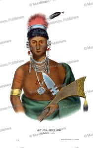 Appanoose, a Saukie (Sac) chief, Thomas McKenney, 1872 | Photos and Images | Travel