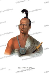 Kaipolequa, a Saukie (Sac) Indian, Thomas McKenney, 1872 | Photos and Images | Travel
