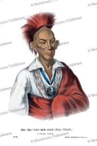 Makataimeshekiakiah (Black Hawk), a Saukie or Sac Indian, Thomas McKenney, 1872 | Photos and Images | Travel