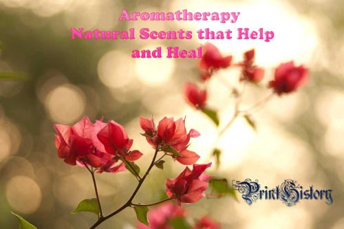 Third Additional product image for - Aromatherapy Natural Scents that Help and Heal