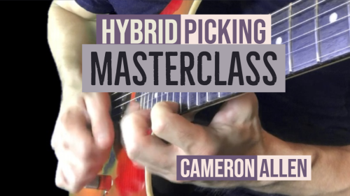 First Additional product image for - Hybrid Picking Masterclass