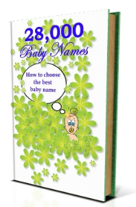 28000 baby names