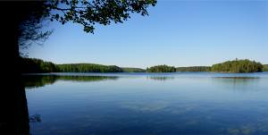 lake - d_wix_016