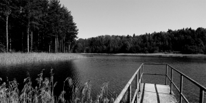 forest lake - d_wix_017.2