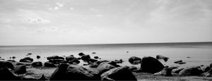 seashore - d_wix_019.2