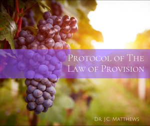 protocol of the law of provision