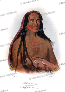 mah-to-toh-pa, four bears, 2nd chief of the mandans, george catlin, 1833